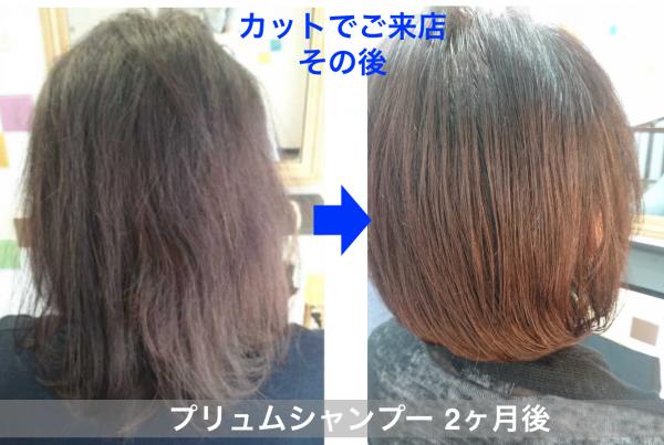 カットでご来店頂いて髪質の変化を撮影した